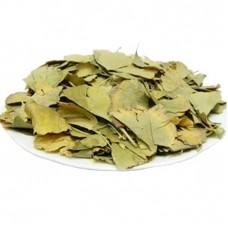 Гинго билоба (лист)